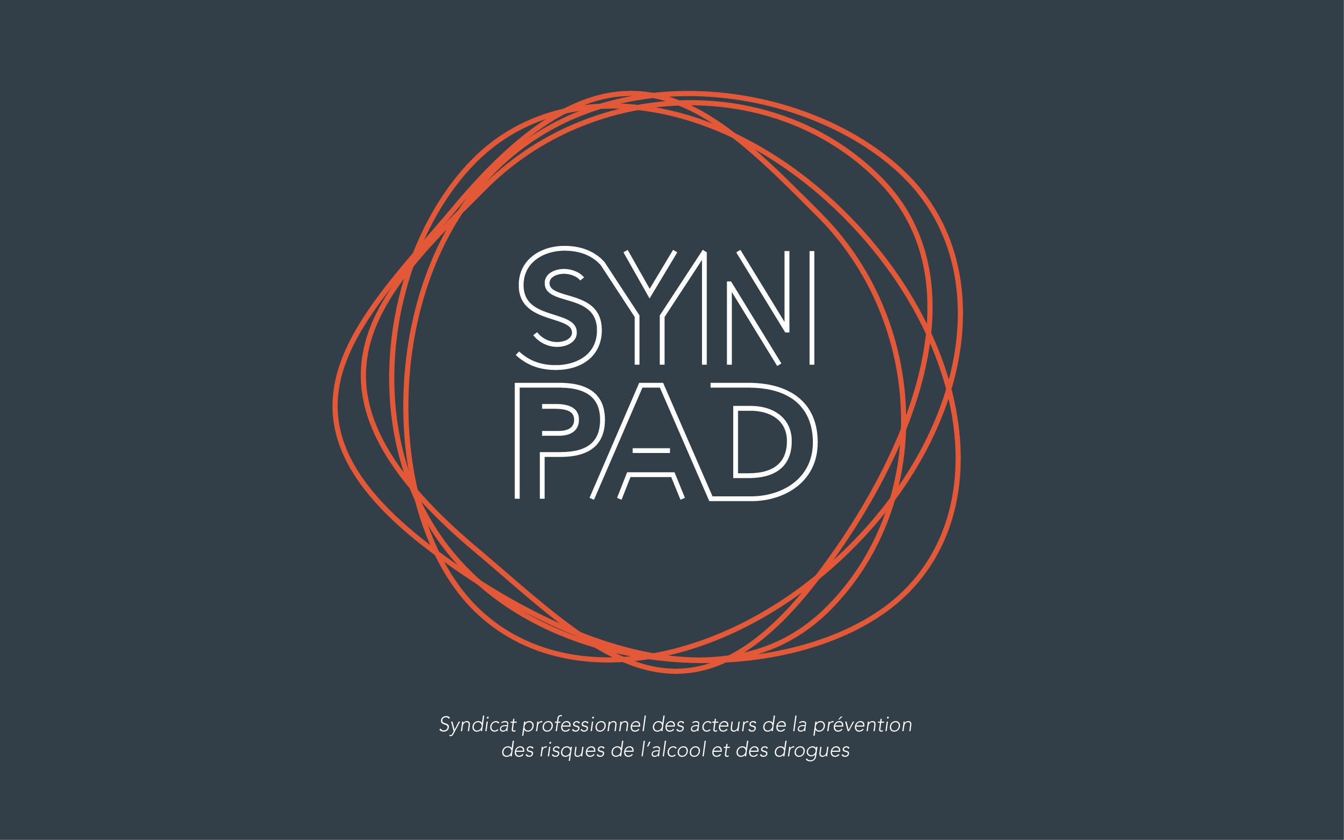 synpad_prez_web-01